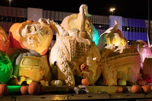 The Atlantic Giant Pumpkin is the world's largest pumpkin and featured in festivals and competitions around the world.