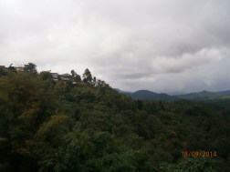 We were mesmerized by the untouched nature scenery on the way to Luang Prabang