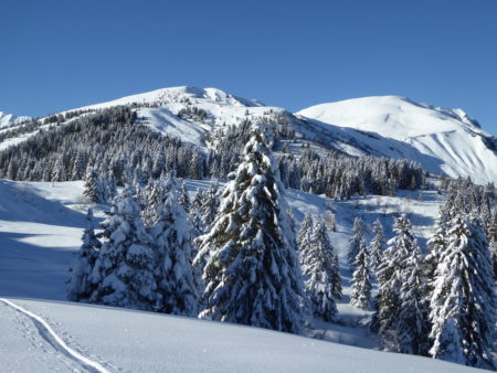 Ski de randonnée Croisse Baulet