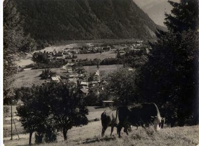 Village d'Argentière