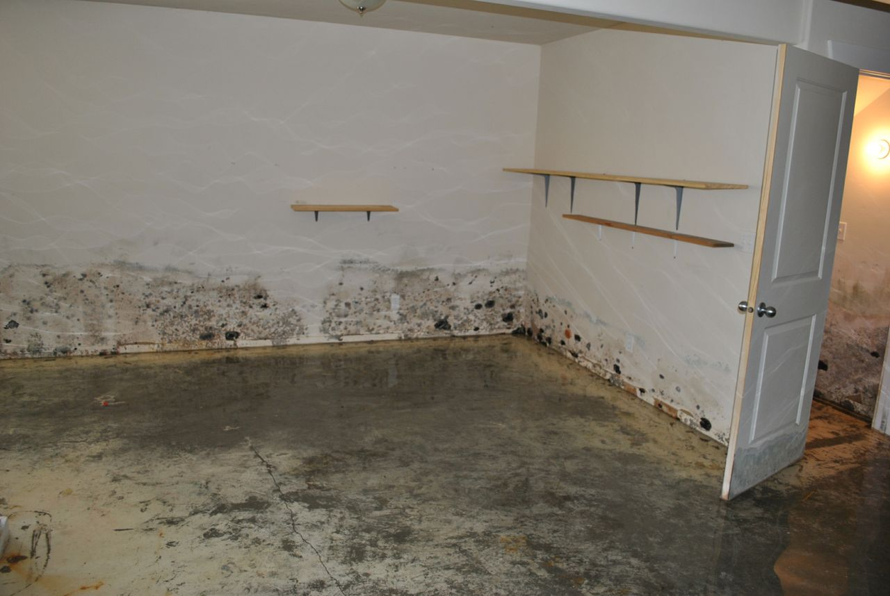 Water Removaldry Out  Montana Basement Solutions