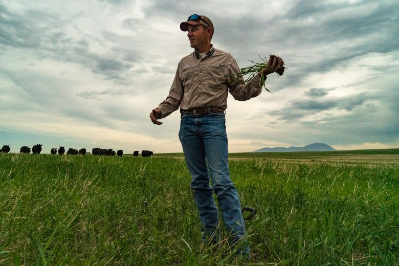Korey Fauque Happy Steer Ranch Montana regenerative agriculture
