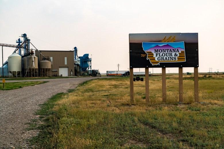 Montana Flour & Grains Big Sandy Montana