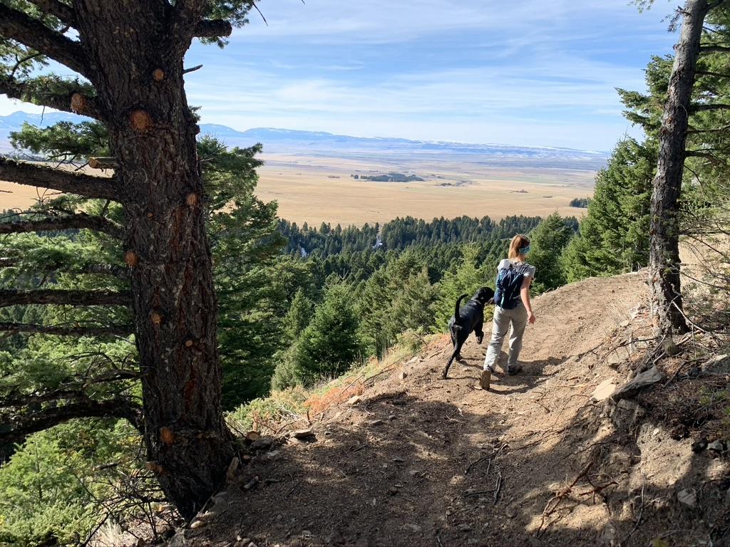 Porcupine-Ibex trail Crazy Mountains Montana