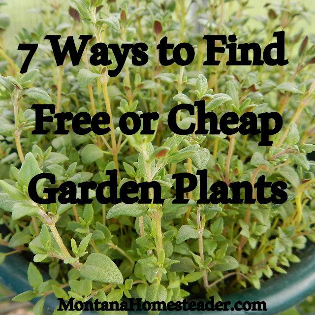 7 ways find free cheap garden