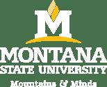 montana.edu/techlink