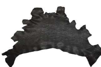 Black shrunken bull shoulders