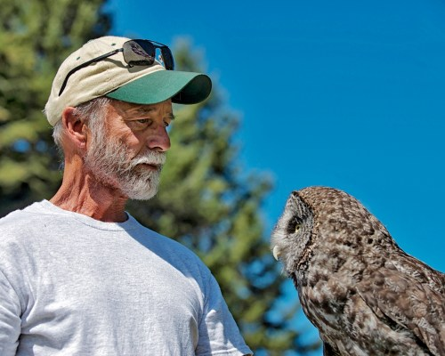 Doug McCarter the osprey man