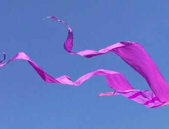 Soaring Kites