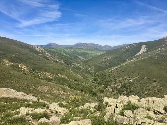 Vallejo del Arroyo de San Regalta (o de las Cercadillas) visto desde Ren del Peral.
