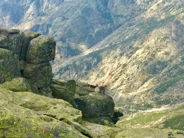 Impresionante caída hacia la Garganta Lóbrega.