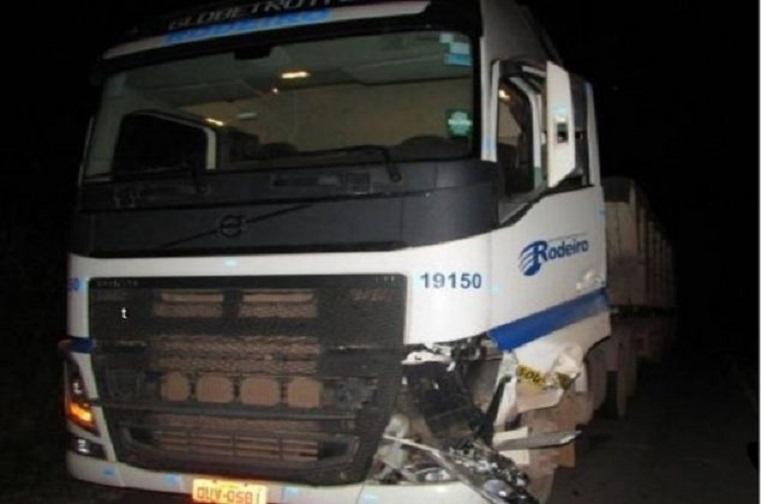 Carreta atropela animal na MGC-354, em Presidente Olegário