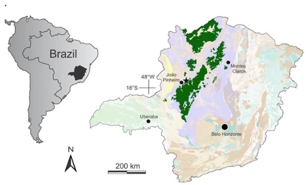 Fóssil de lagarto mais antigo da América do Sul é descoberto em João Pinheiro