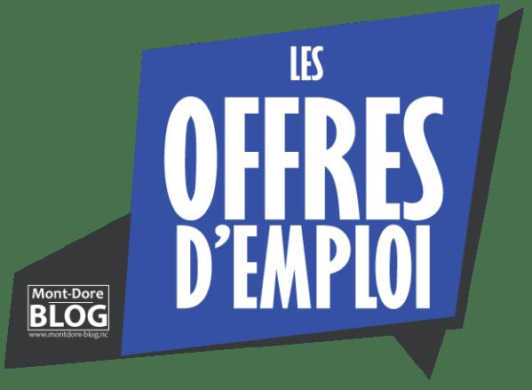 LOGO OFFRES DEMPLOI 01 Les offres demploi