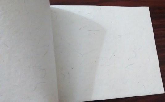 Cellulose-free paper