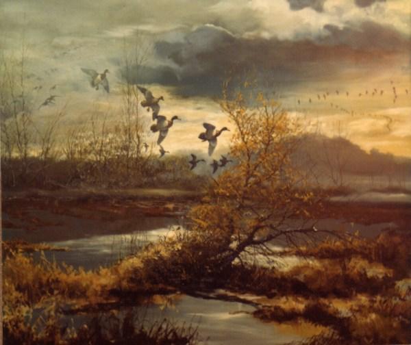 bland illinois landscape