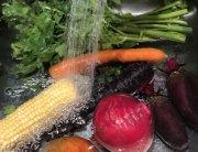 Desinfectar alimentos