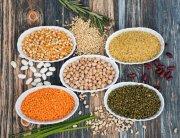 Antinutrientes en nuestra dieta