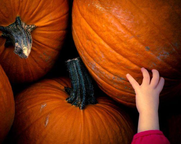 halloween-petite-main-enfant