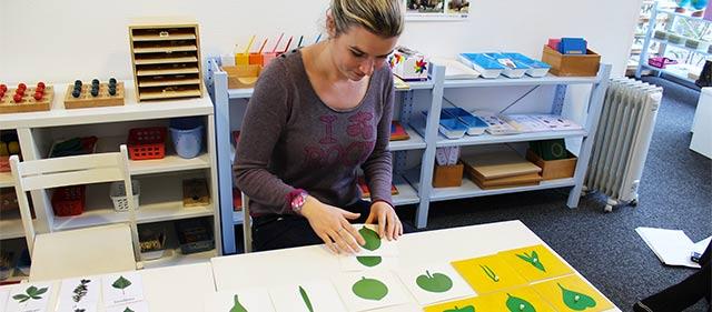 Formation Montessori 3-6 ans : culture