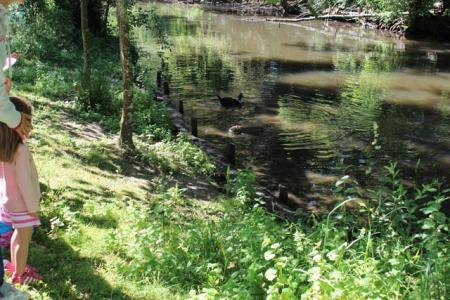 étang - parc Majolan - école Montessori Internationale Bordeaux