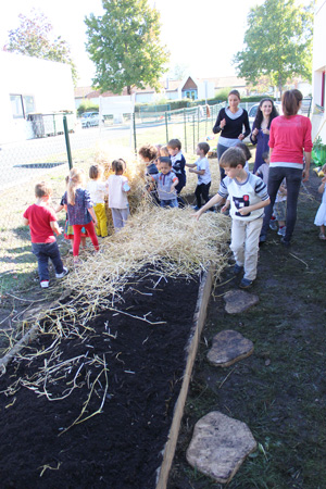 montessori international bordeaux-gradignan nature potager8