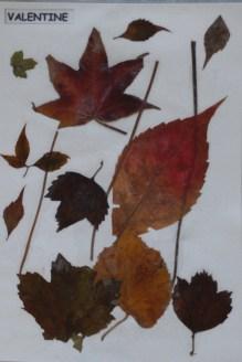 activite montessori automne 10