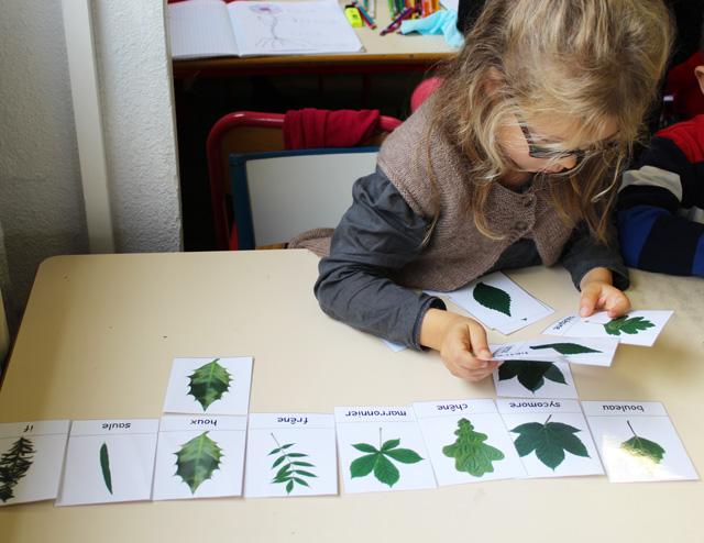 feuilles montessori
