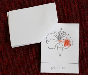 livret élève fleur montessori