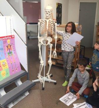 culture montessori international bordeaux