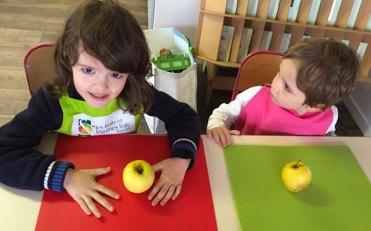 sensoriel montessori international bordeaux 13