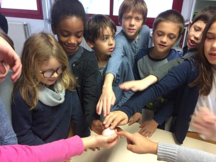 Montessori International Bordeaux : sciences, expérience en chimie. oeuf calcaire vinaigre blanc