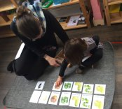 montessori cartes nomenclature