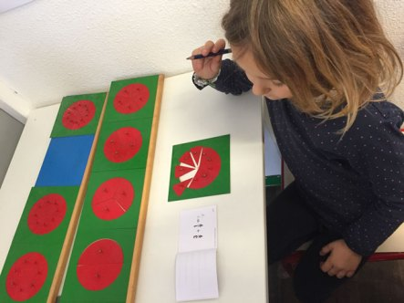 montessori international bordeaux fractions 10