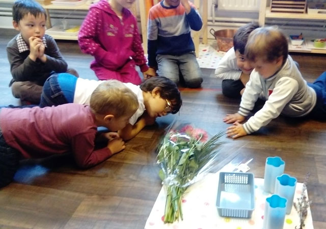 montessori international bordeaux fleurs 7