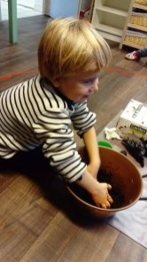 montessori international bordeaux champignons 8