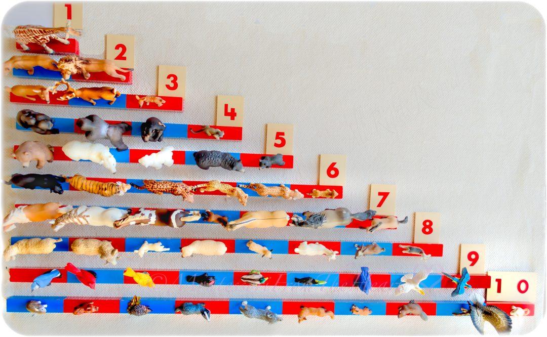 Montessori-Number-Rods-Animals