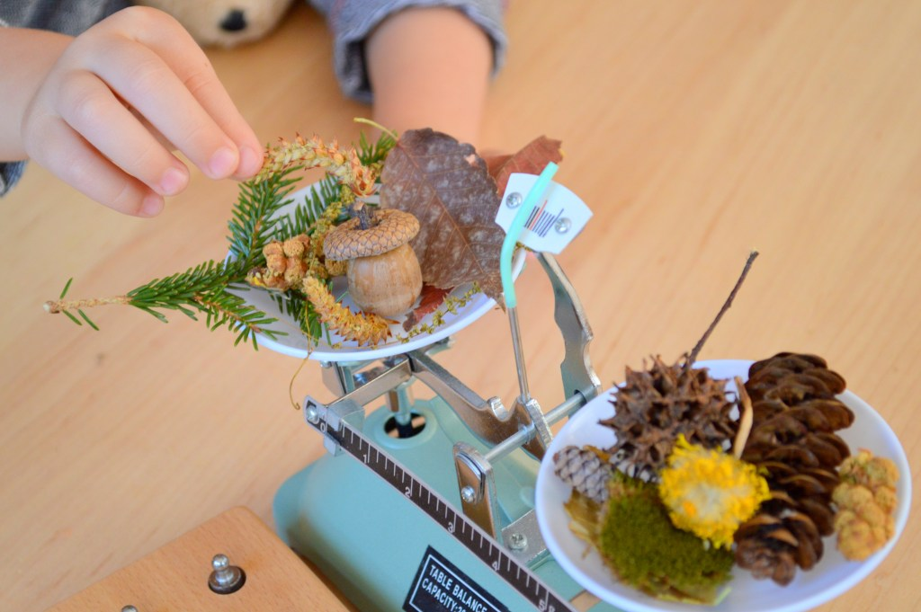 Balancing Nature Finds with Balance Scales