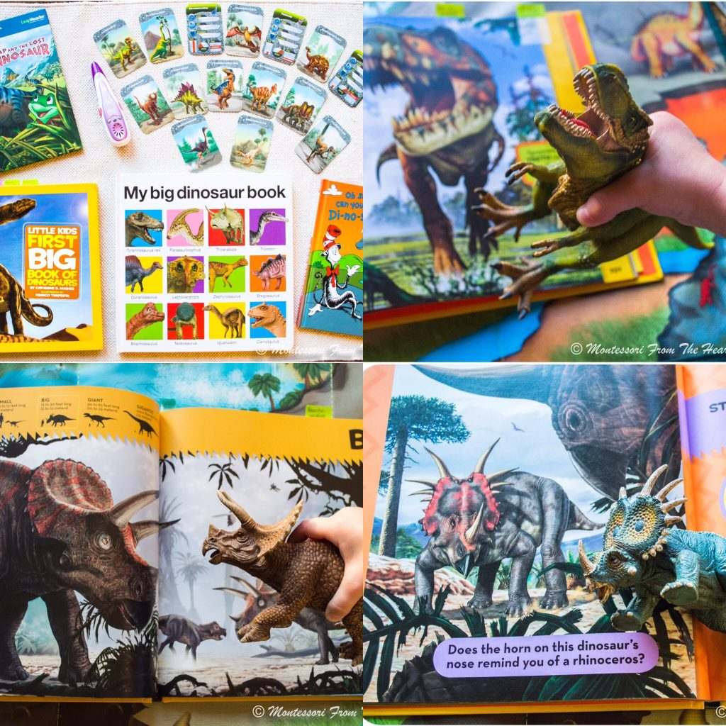 Dinosaur-Books-For-Kids