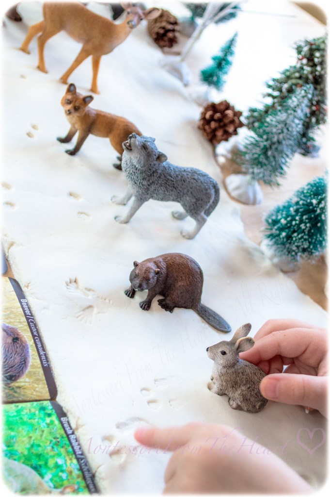 Bunny-Tracks-Foot-Prints-in-Snow-Play-Dough