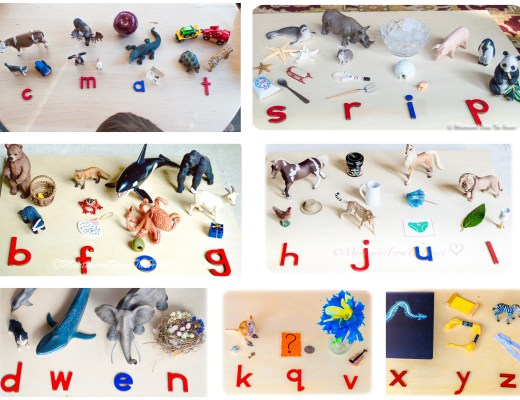 6-Montessori-Phonetical-Sets