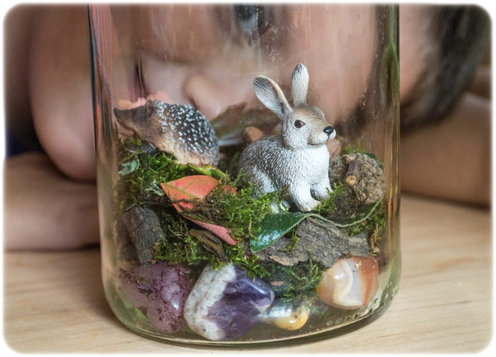 DIY-Terrarium-Kids-Activity