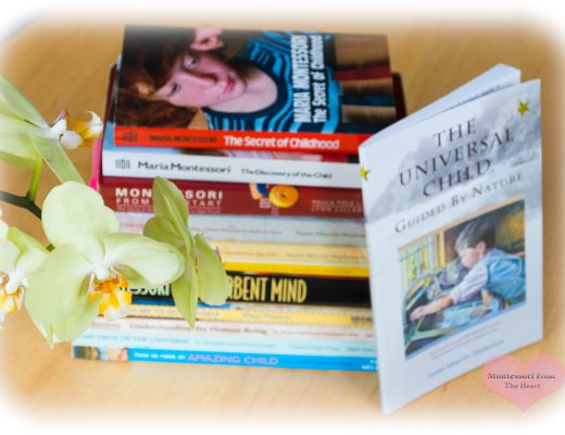 Books on How to Raise a Child The Montessori Way