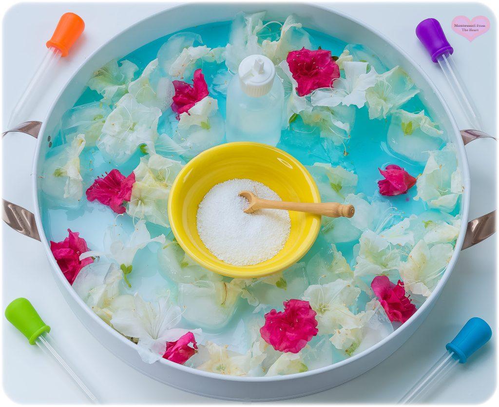 Rescue-Frozen-Spring-Flowers-Kmart-Sensory-Play-Tray-STEM-LD