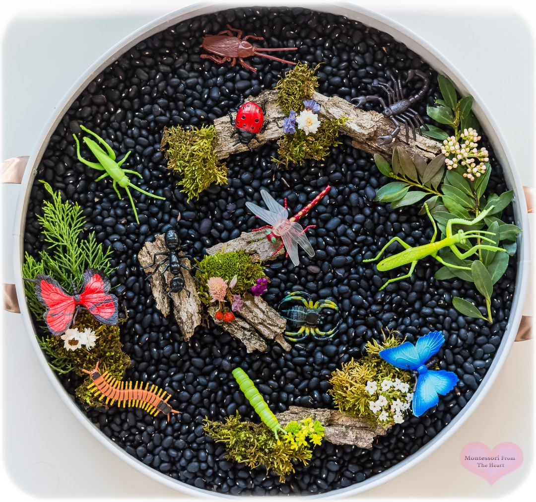Insects-TOOBs-Black-Bean-Kmart-Play-Tray