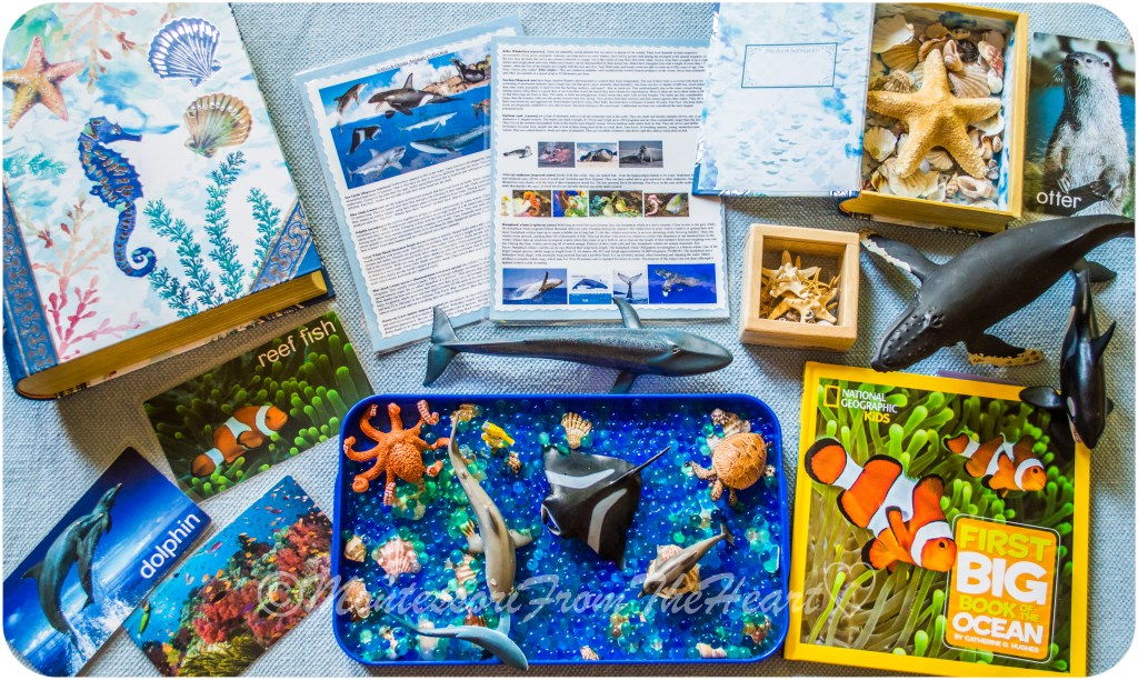Ocean-Water-Beads-Sensory-Play-Tray