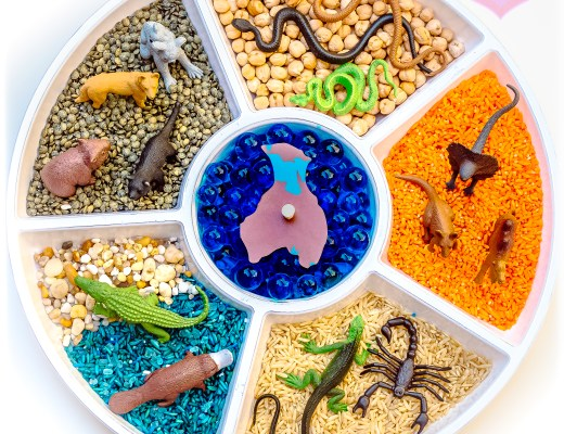 Australia-Animals-Safari-Ltd-Snack-Tray-Sensory-Play