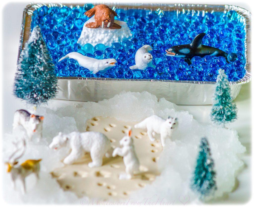 Arctic-Learning-Kit-Land-Water-Sort-Montessori Homeschool