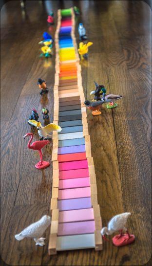 Montessori-Color-Tablets-Bird-Matching