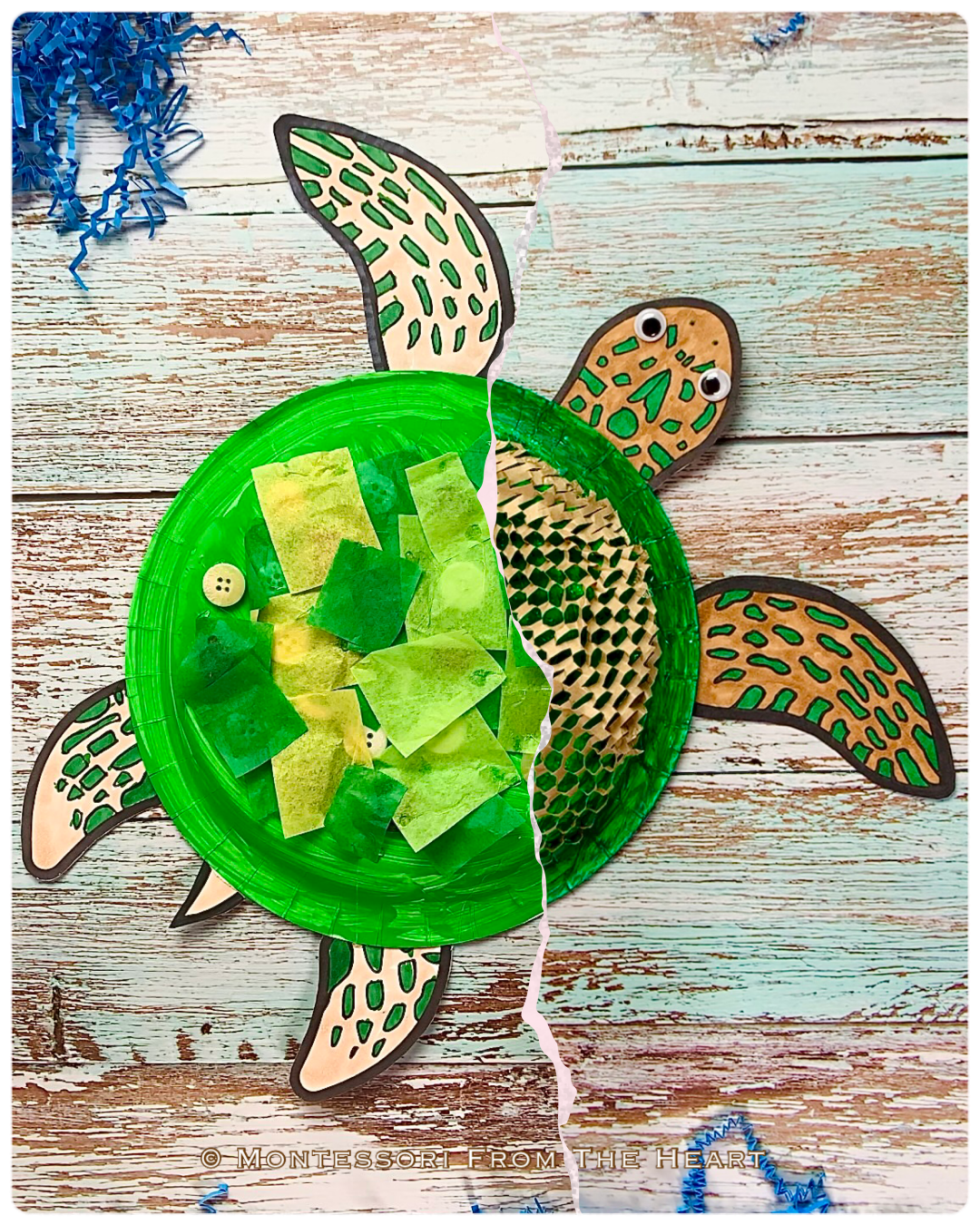 *Turtle Paper Plate Double